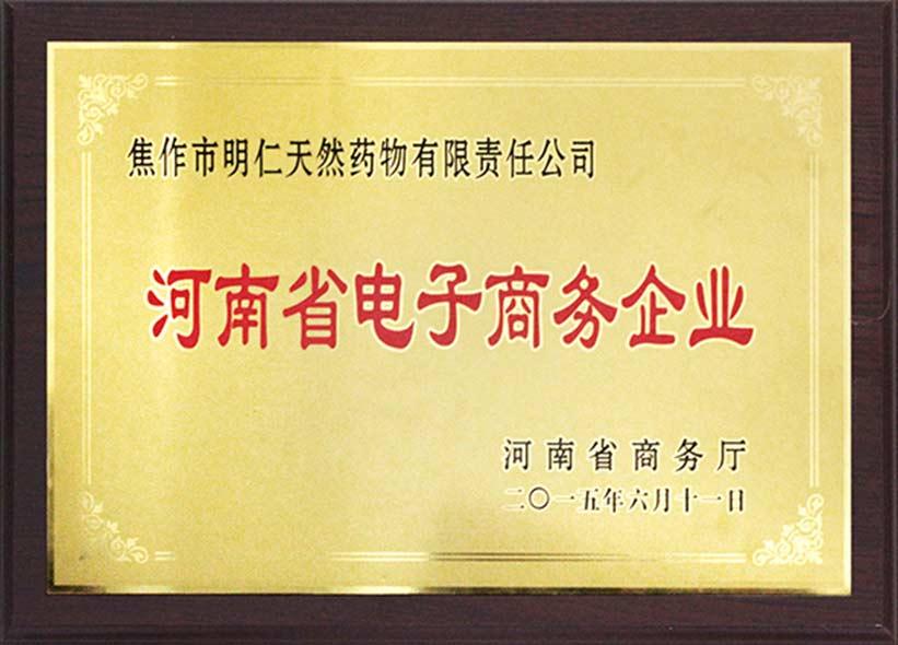 2015河南省电子商务企业