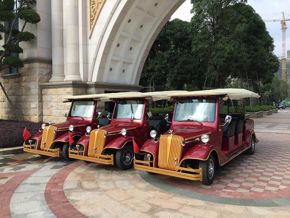 海南電動貴賓車
