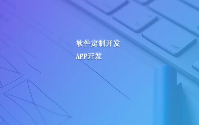 软件开发,app开发