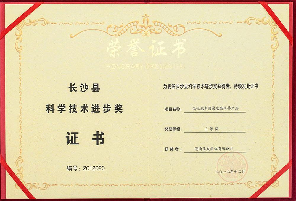 科學技術進步獎三等獎