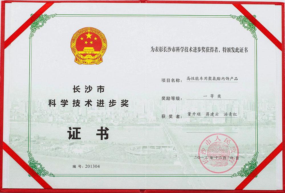 科學技術進步獎一等獎