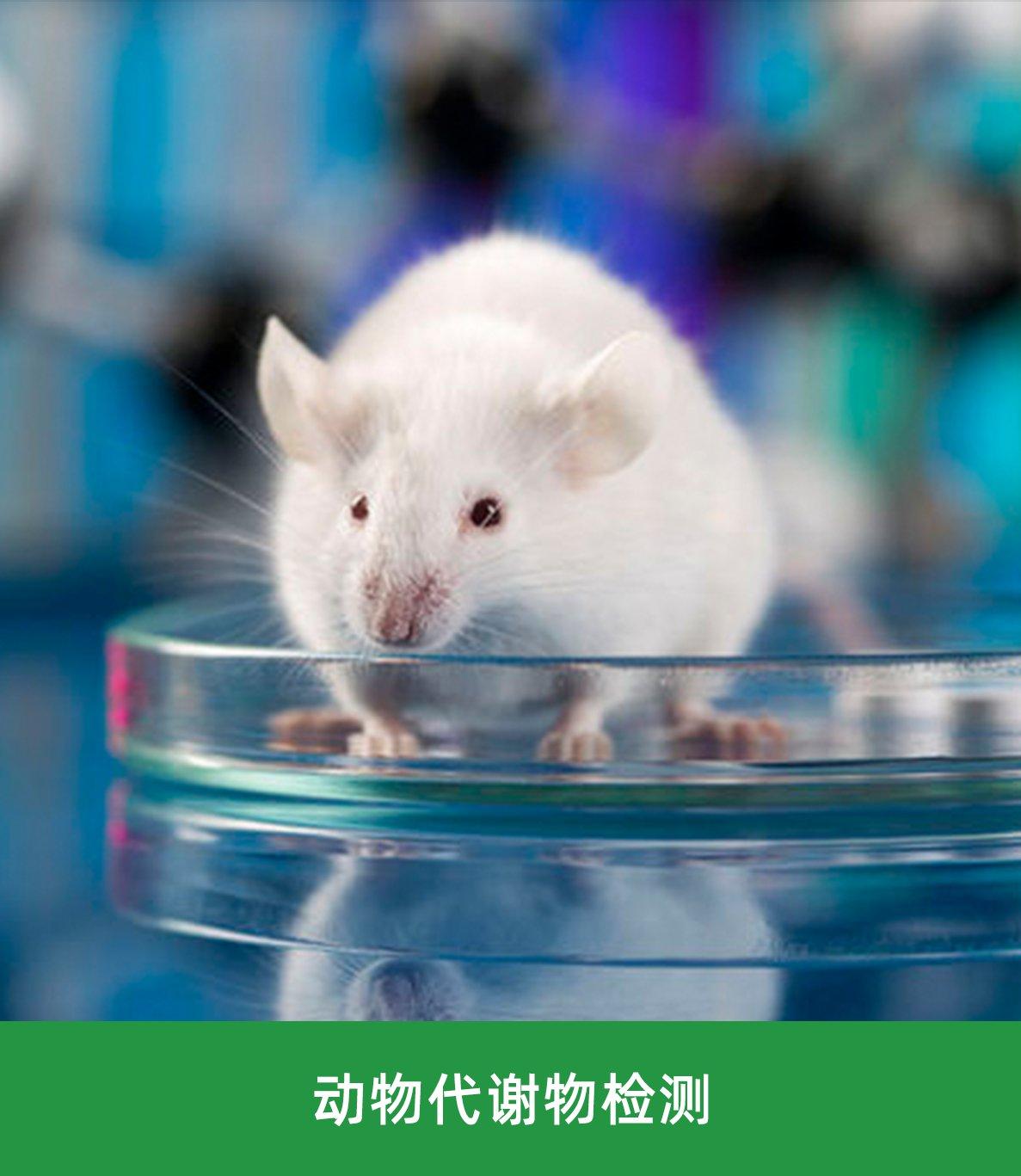 动物代谢物检测