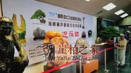 海峡两岸艺术联展,崖柏正式走进台湾!