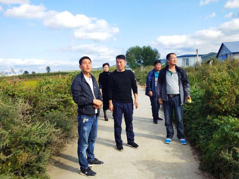市政协张国华主席到柳亭村开展扶贫调研工作