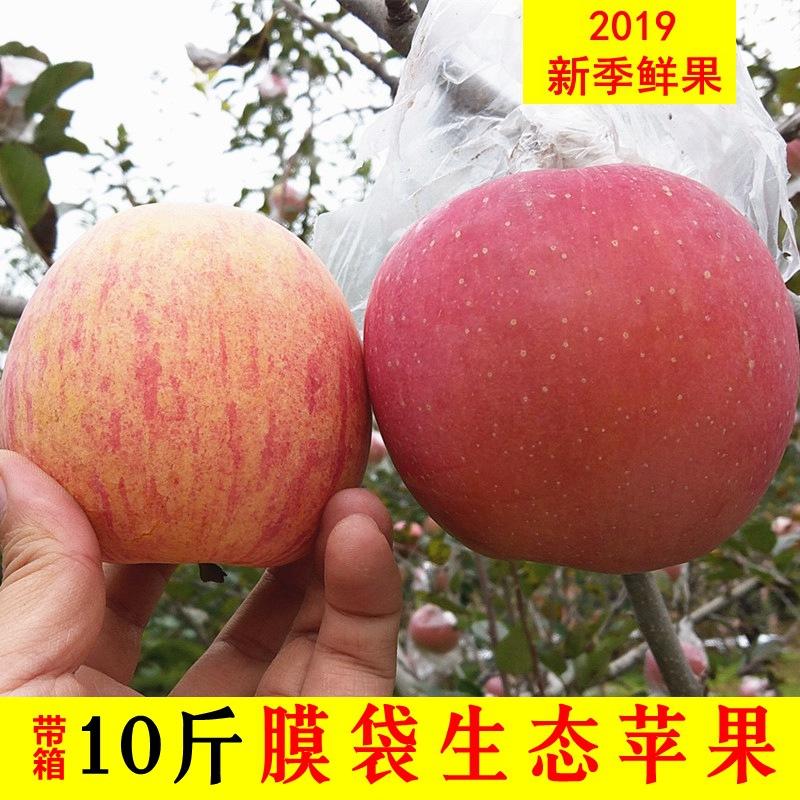 当季新鲜陕西苹果膜袋红富士丑苹果非冰糖心一箱10斤25.8元包邮