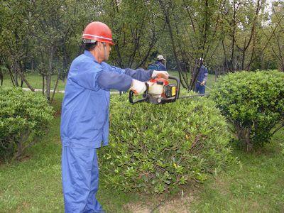 东莞园林绿化养护
