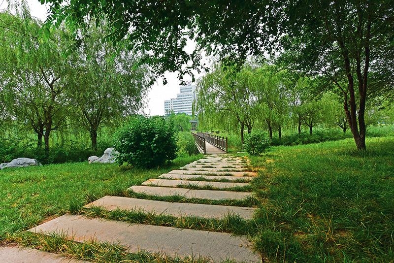 山东潍城区大于河项目