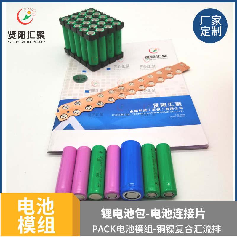电池模组厂家一体支架汇流排2*10 20P 低速车模组铜镍复合电池连接片