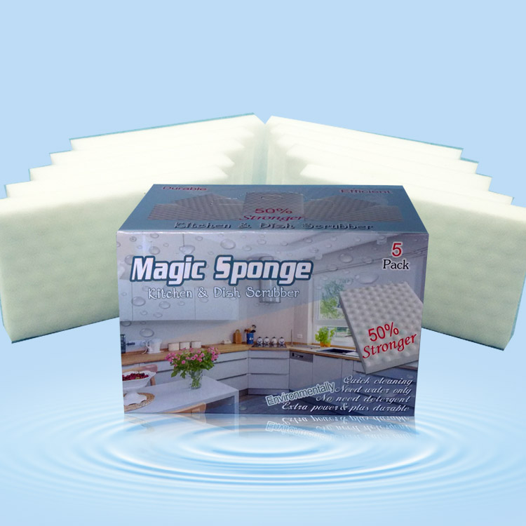 Magic Dish Sponge