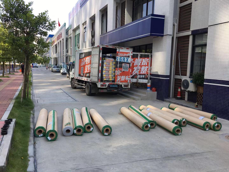 9-28区政府会议厅食堂|卷材PVC胶地板工程案例