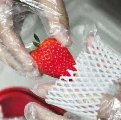 歇马村红颜99草莓 省内包邮 品质保证  莓好生活从这里起航