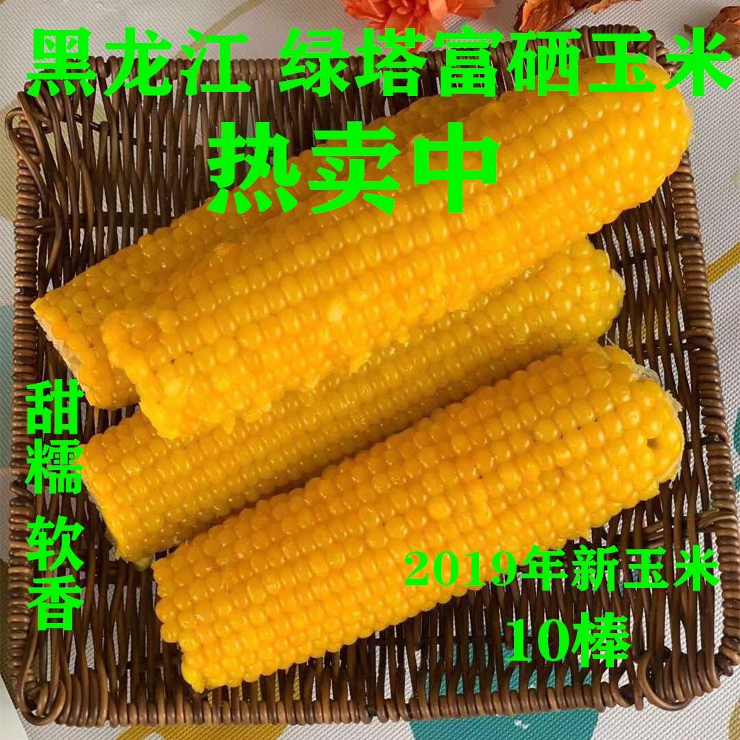 绿塔玉米5斤装 大连市仓储中心发货 全国包邮