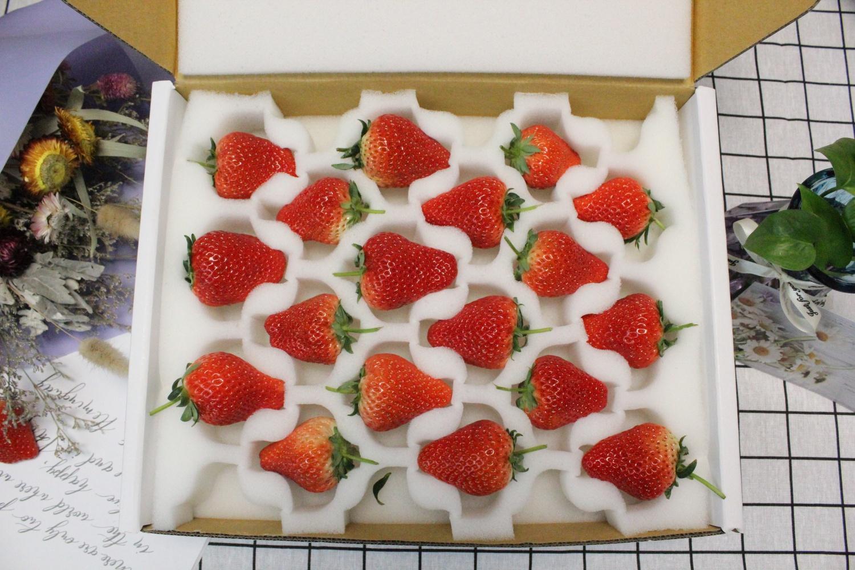 O.A.农品 大连庄河红颜九九大草莓  品质保证  莓好生活从这里起航