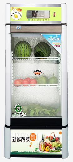 醫然冰柜 立式冷藏柜 冷藏展示柜 食品飲料冷鮮柜