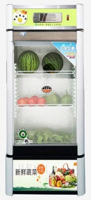 医然冰柜 立式冷藏柜 冷藏展示柜 食品饮料冷鲜柜