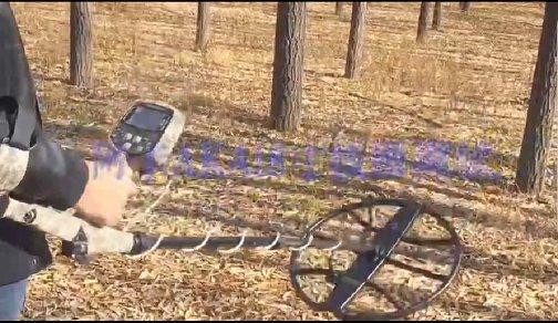 俄罗斯AKA7272 V 4.0金属探测器 实际深度测试