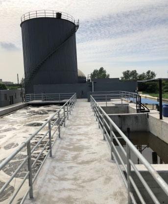 筛选养殖专用菌 对养猪废水的处...