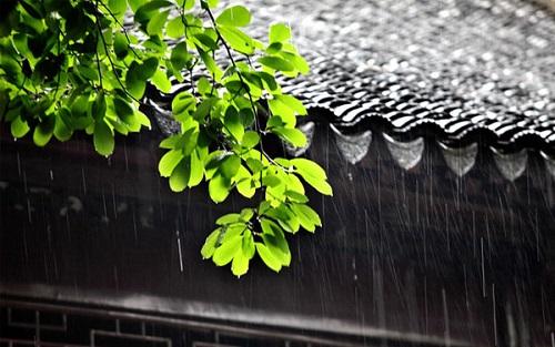 梅雨季防潮指南 | 跟潮湿说...