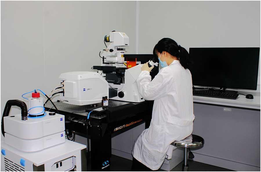 蔡司共聚焦显微镜LSM800