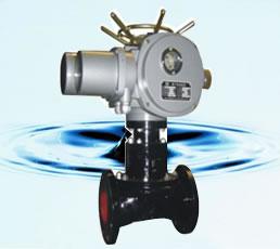 電動隔膜閥 EG941