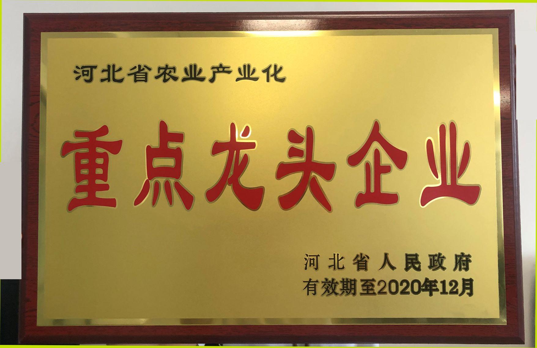 2019-2020年河北省农业产业化重点龙头大奖888pt牌匾1