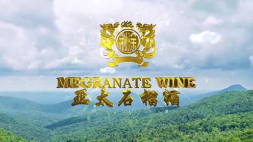 亚太石榴酒.广东省安徽蚌埠商会2020年年会赞助产品