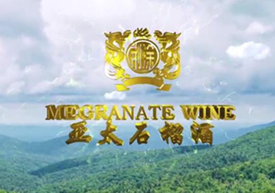 安徽省怀远县亚太石榴酒有限公司