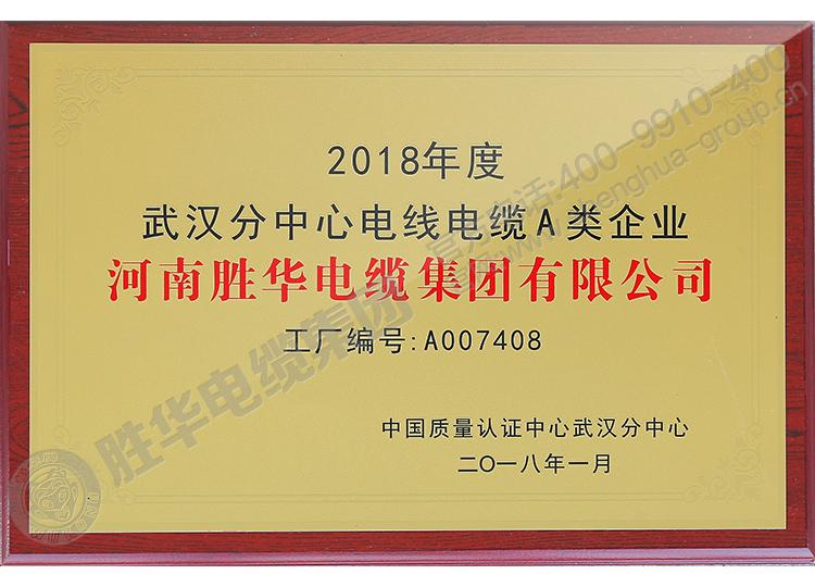 河南亿博体育娱乐电缆武汉分中心电线电缆A类企业