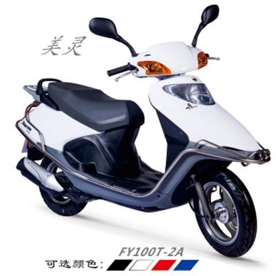FY100T-2A 美灵