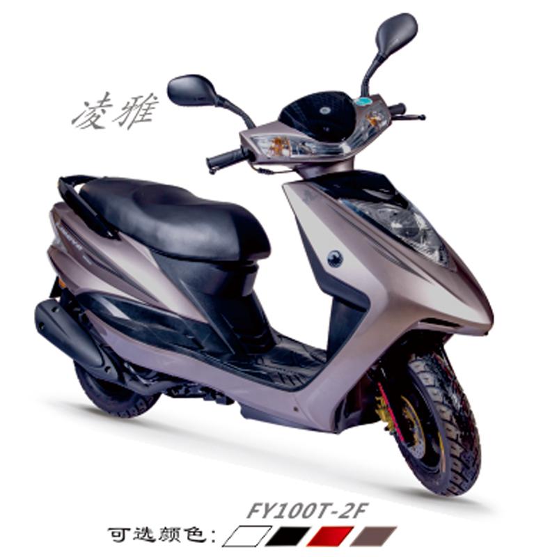 FY100T-2F 凌雅