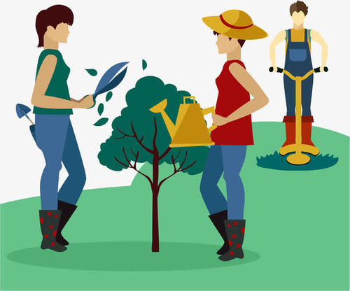 园林绿化养护售后服务