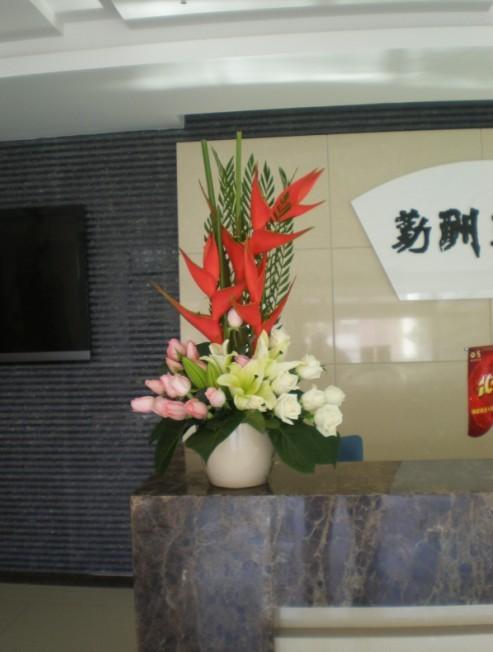 花卉植物系列