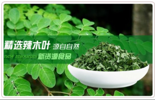 广州草粤行茶叶有限公司打造观辣树***茶创富项目
