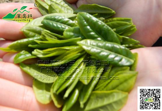 六安瓜片 (绿茶)