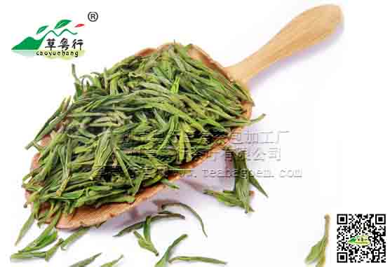 安吉白茶(绿茶)