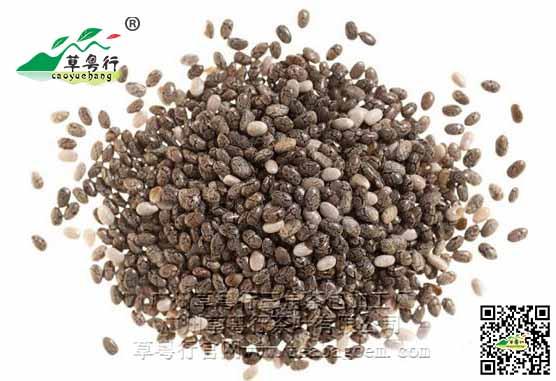 新资源食品之奇亚籽代用茶