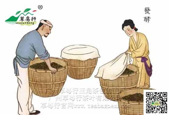 茶聊丨什么是茶叶发酵?草粤行代用...