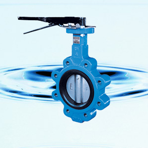 D(3/6/9)7L1X Wafer Concentric Butterfly Valve