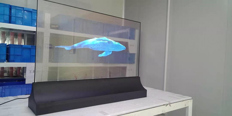 55寸OLED