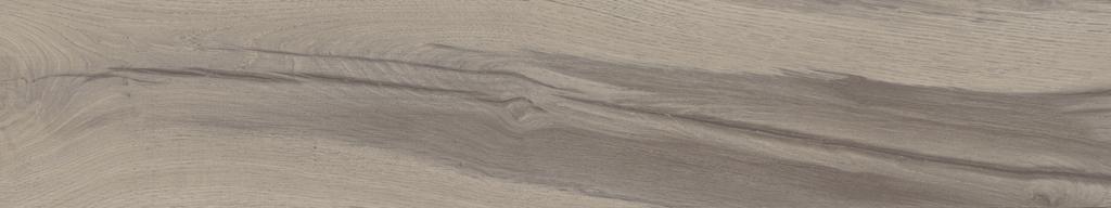 M158009 灰象牙木