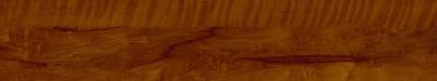M158005所罗门海棠木