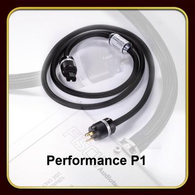 Performance P1电源线
