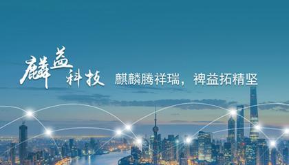 上海麟益信息科技有限公司