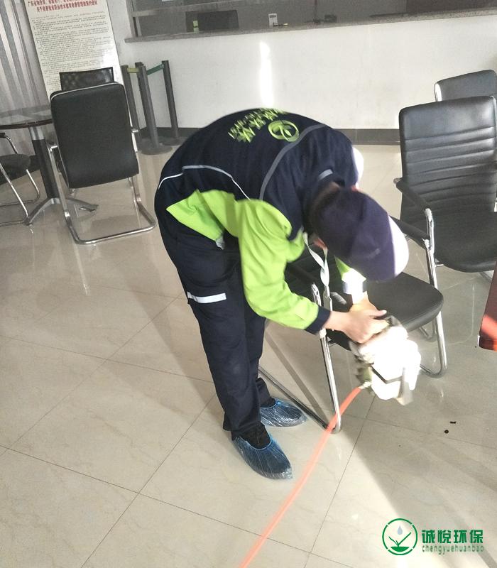 广州市司法职业学校除甲醛案例