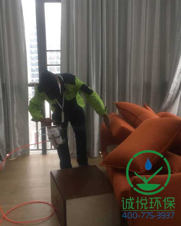 佛山广佛智城公寓装修除甲醛案例