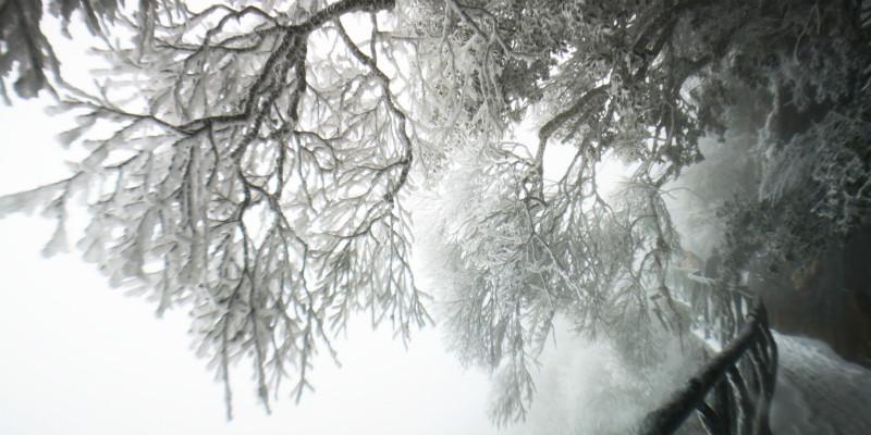 迎战冰雪 | 天气寒冷,市民暖心订单送外卖小哥