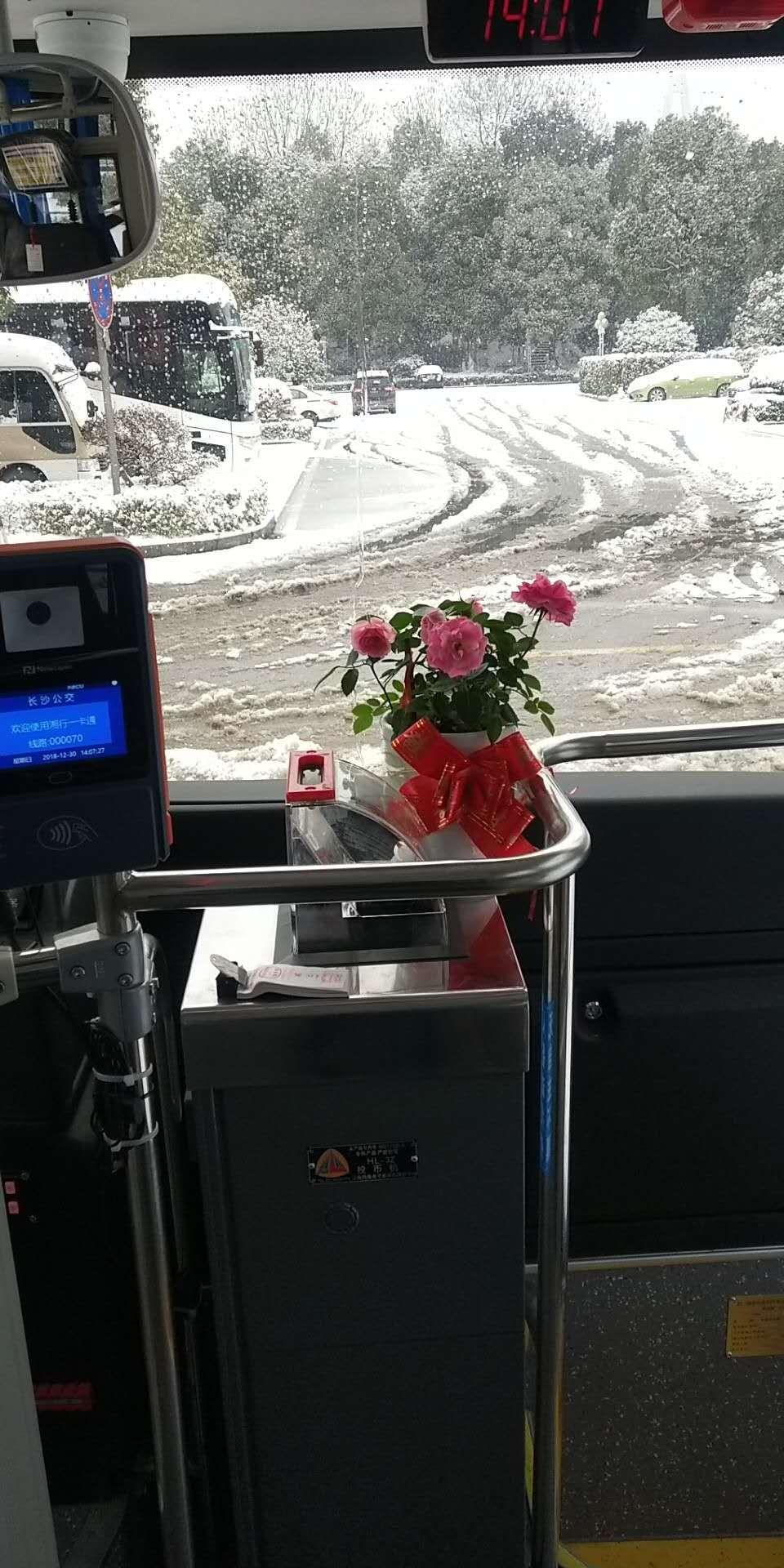 迎战冰雪丨暖暖的坐垫、暖暖的姜茶,粉红色鲜花,长沙的公交车好温暖!