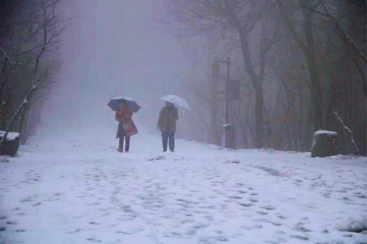 """岳麓山上现""""玉树琼枝"""",大雪中不时可见游客"""