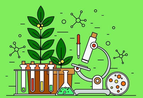 生物 | 选修一《生物技术实践》考试范围...