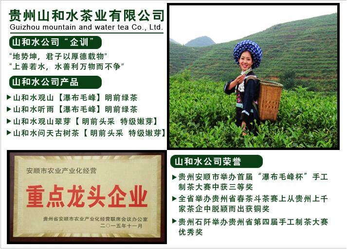 貴州山和水茶業(集團)有限公司官方網站上線!